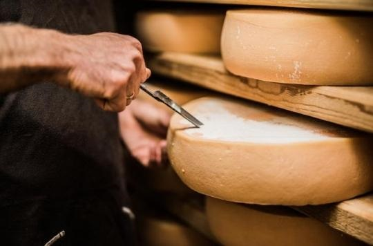 fromage le morbier